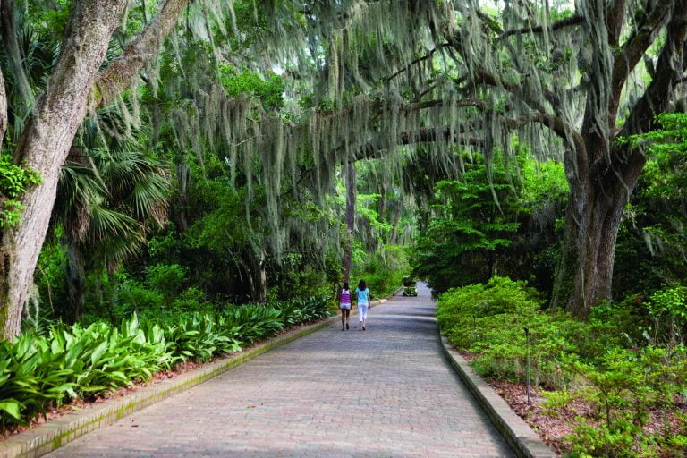 Maclay Gardens | Photo Credit: Visit Tallahassee