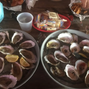 Oysters at Birds