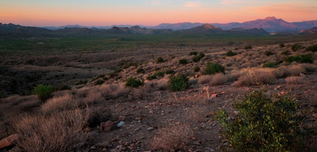 Green Valley, Arizona dessert landscape